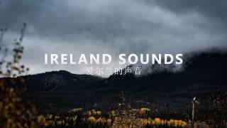 CID - Secrets (ft. Conrad Sewell)