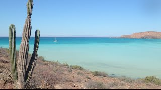 Ep 5: Islands in the Desert - Sea of Cortez, Mexico