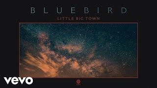 Little Big Town Bluebird
