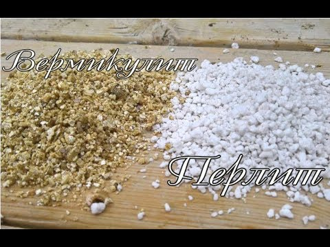 ПЕРЛИТ и ВЕРМИКУЛИТ | Использование в комнатном цветоводстве