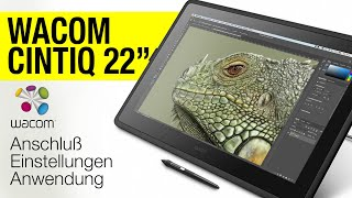 Wacom Cintiq 22 Review + Digital Painting Test