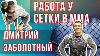 Любимые техники для ММА от Дмитрия Заболотного / Дневник ММА