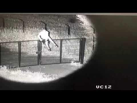 На Харківщині порушник кордону «тестував» як працює інтелектуальний кордон та став героєм відеозапису