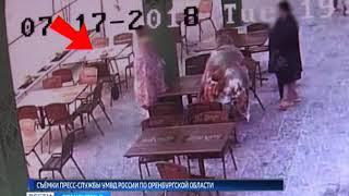 В Соль Илецке сотрудники полиции задержали подозреваемую в краже сумки в одном из кафе
