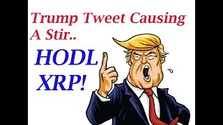 XRP King of Coins: Trump Not A Fan Of Bitcoin? HODL XRP!