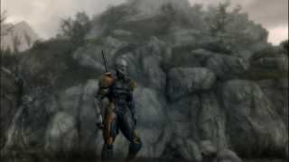 Skyrim Grey Fox MOD