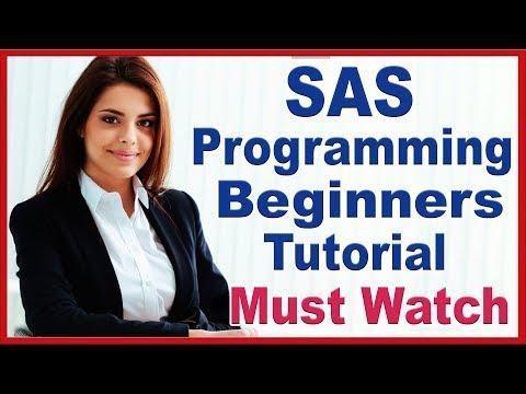 SAS Programming Tutorials For Beginners By Priya   SAS Online ...