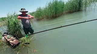 Рыбалка на озере алаколь в казахстане