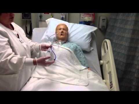 Sintomizinowaja die Salbe gribok der Nägel