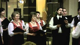 preview picture of video 'Schwaben Ball Mohács 2010 - Die Singenden Quelle Chor'