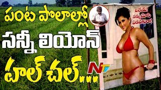 Sunny Leone Hulchul in Crop Fields | Farmer Puts Up Poster to Protect From Evil Eyes
