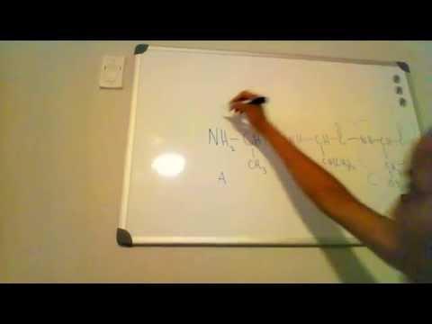 Algebra Application: n ! and amino acid arrangements: MCAT: Category 5D: