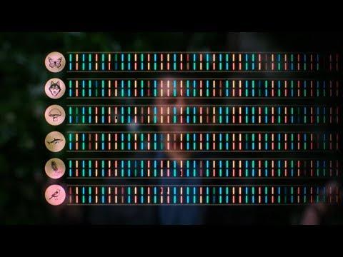 Download Cosmos A Spacetime Odyssey Season 1 Episodes 13 Mp4