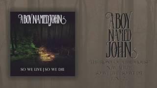 "A Boy Named John - ""The Irony of a Birdhouse"" (Album Stream)"