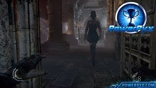 Thief - Health Hazard Trophy / Achievement Guide