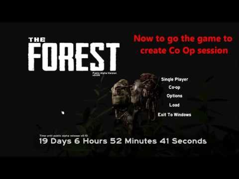 For all players trying to directly connect :: The Forest Co-op