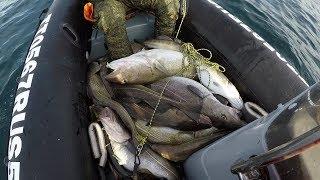 Удачная рыбалка в Баренцевом море / Successful fishing in the Barents sea