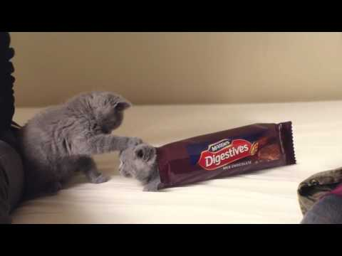 McVitie's Chocolate Digestives - Sweet 2016