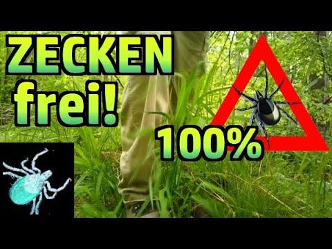 Zecken-Schutz: Endlich zeckenfrei durch Permethrin! #114