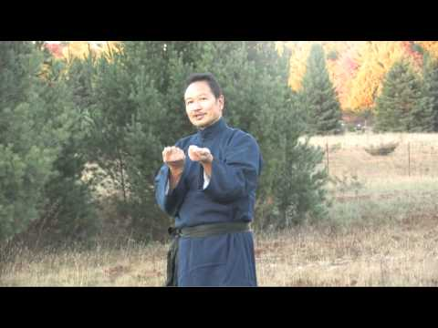 Wing Chun Centerline Concept