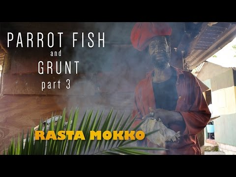 Parrot Fish and Grunt part 3