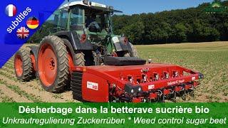 Weed control in organic sugar beet – 4 machines compared (Steketee IC-Weeder, Garford Inrow, Harrow)