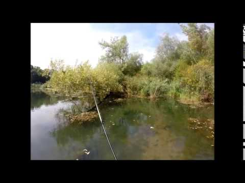 Devils Creek Bass Fishing 2014 – Pond Management