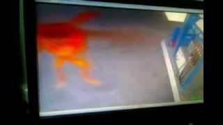 Сатана запечетлен на камеру в Таджикистане -СЕНСАЦИЯ