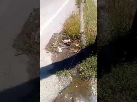 Διαρροή νερού στην Αλεξάνδρεια