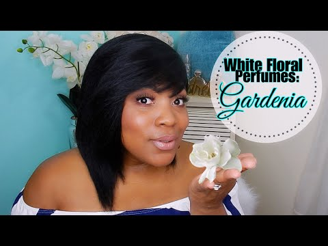 White Florals: GARDENIA | Best Perfumes for Women