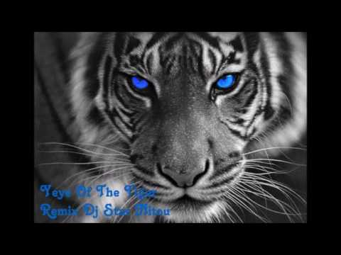 Eye Of The Tiger [Remixed By  Dj Star Nitou] 2016 Mp3