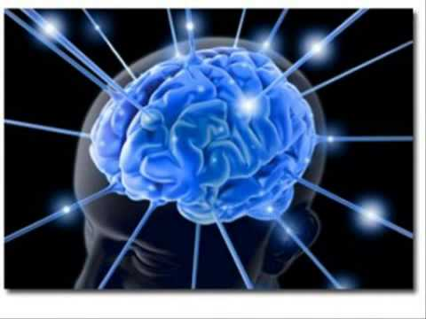 จากดินแดนในสมองสามารถมีชีวิตหนอน