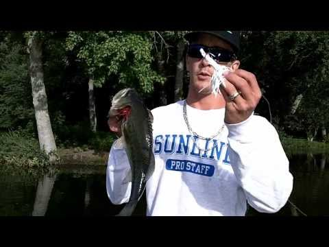 WILLIAMS POND DELAWARE SUMMER BASS