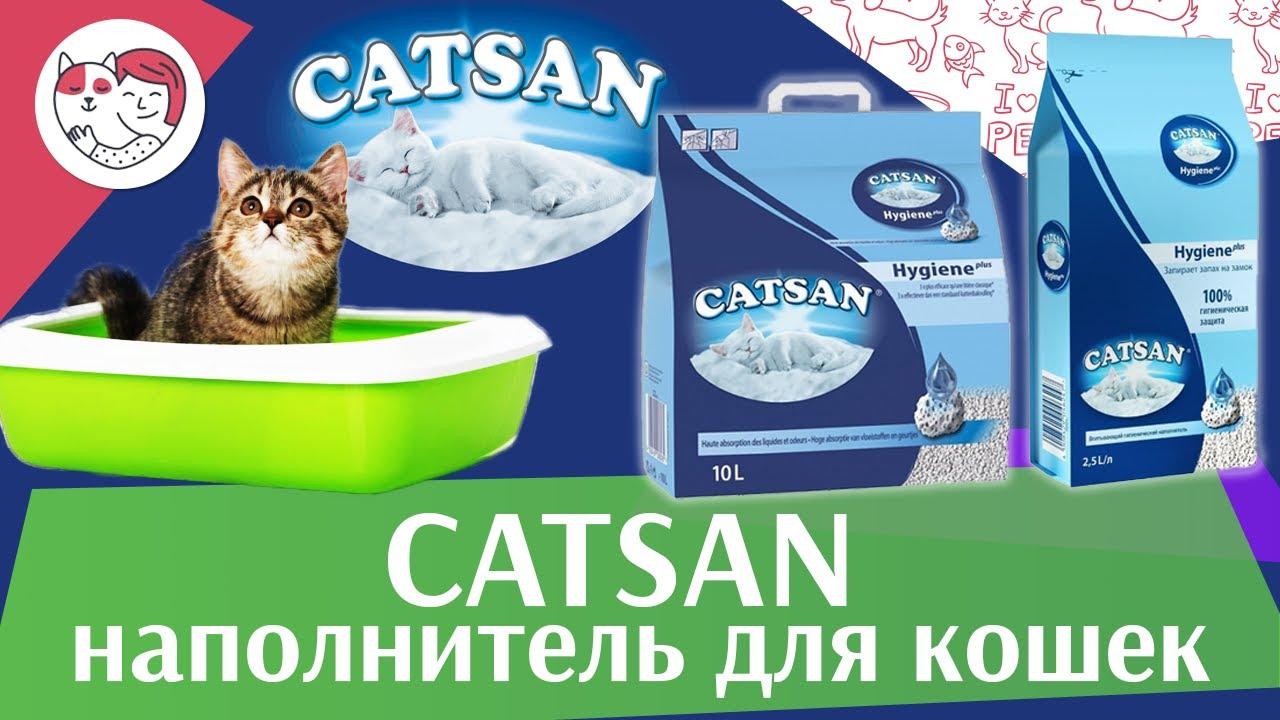 Catsan на ilikepet