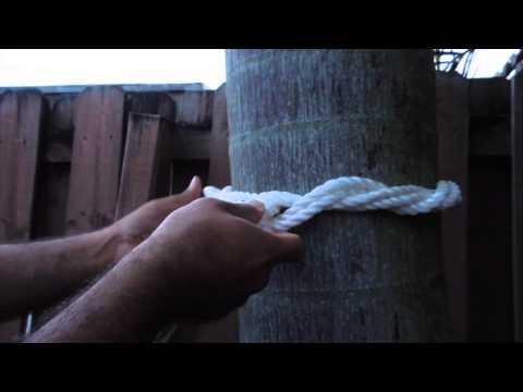 Single tree emporium arthur iowa