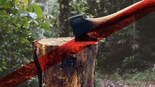 video: Urged on by 'Captain Chainsaw', Brazilians pick up tools to chop down the Amazon