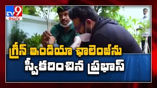 Prabhas Accepts Green India Challenge And Planted Saplings Along With Mp Santosh Kumar - Tv9