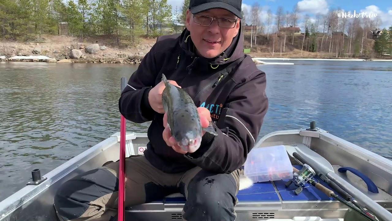Trollingfiske i Luleälven