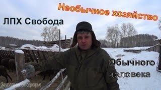 Необычное хозяйство обычного человека //Деревенская жизнь