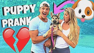 Surprising My Girlfriend With A PUPPY PRANK
