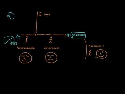 План ухода за пациентом с гипертонией