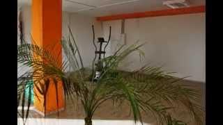 preview picture of video 'EMS Fitnessstudio Weiden Figurstudio'