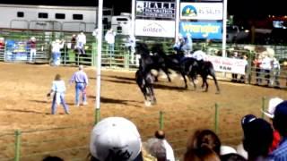 Terrifying Fall, Jason Goodman Percheron Roman Riding, Ogden Pioneer Days 7 20 15