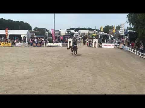 Belgian championship - Gesves