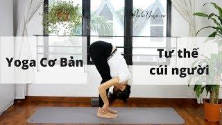 Yoga Cơ Bản Tại Nhà - Cúi Người Phía Trước - Matxa Tiêu Hóa Và Xả Stress