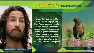 """Laudato Si' recitada en décimas: """"De la mirada de Jesús"""""""