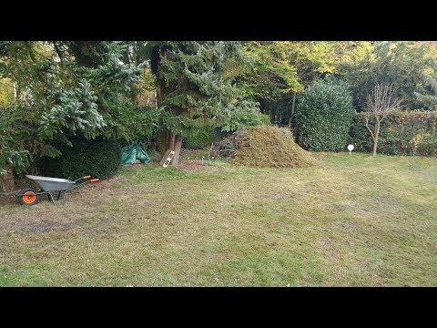 "Rasen vertikutieren mit viel Moos ""hardcore"""