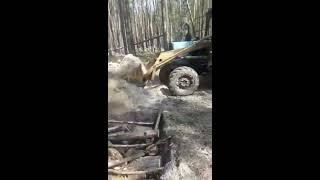 В Тюмени грубо нарушают лесной кодекс (июль 2018)