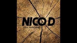 Soul Searching - Nico D