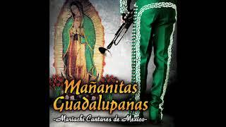 Mañanitas Guadalupanas - Mariachi Cantares De Mexico (Disco Completo)